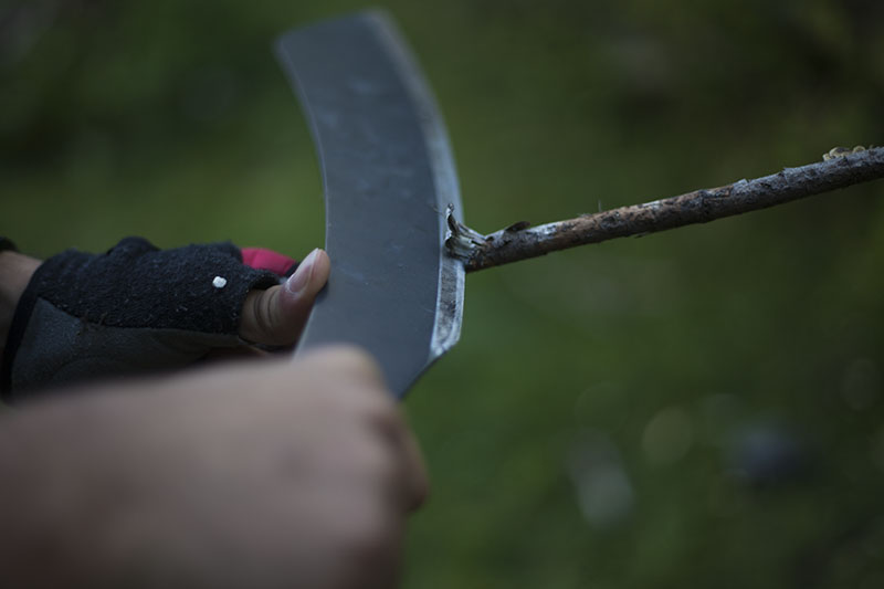 testing survival and camping knife
