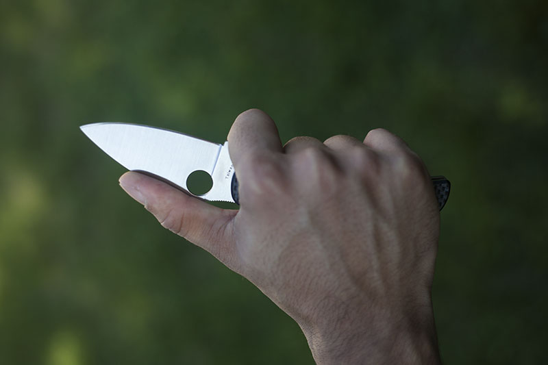leaf shaped spyderco sage i folder