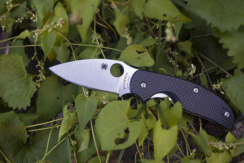 spyderco-sage-1-carbon-fiber-plain-edge-knife-review