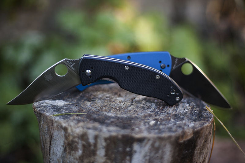 spyderco tenacious sprint run knife