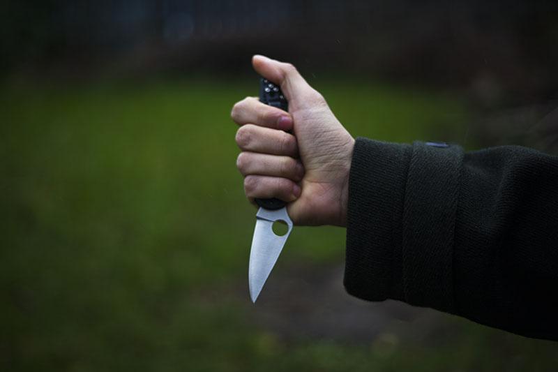 frn handles spyderco delica 4 ffg knife