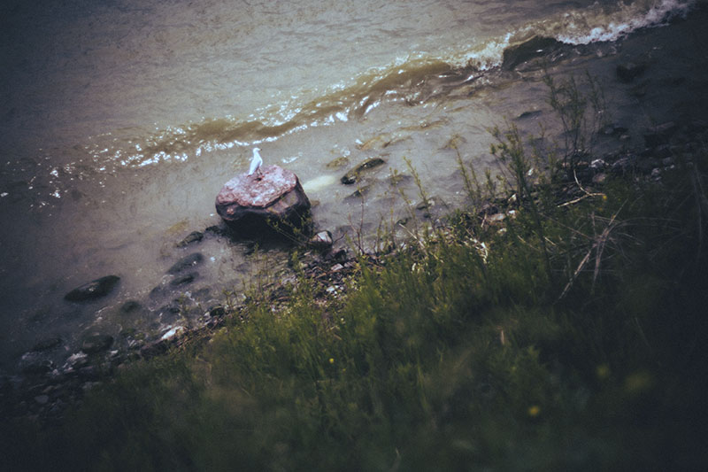 survival blog seawater warticle