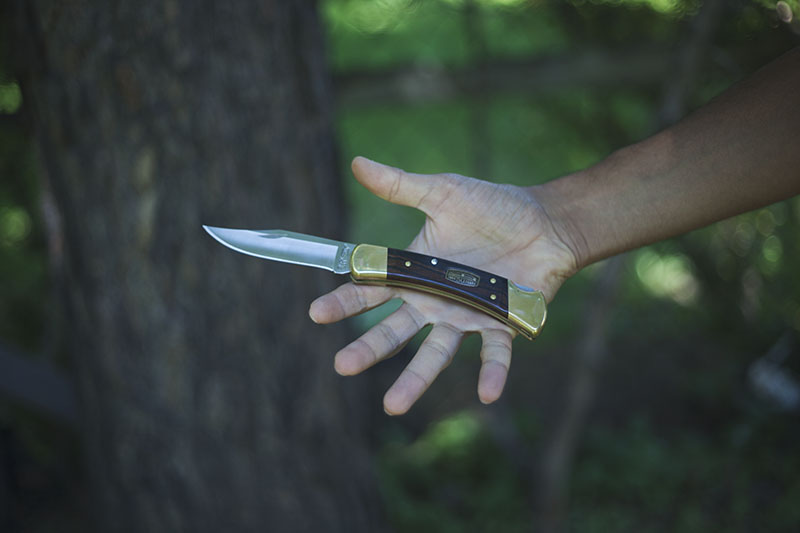 buck 110 classic folding hunter survival blog review