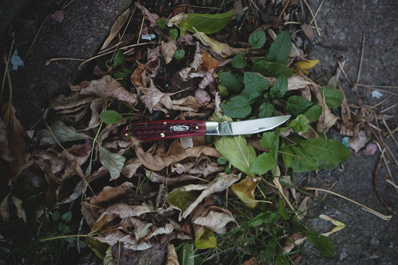 everyday carry pocket knife traditional slip joint review case swayback gent knife