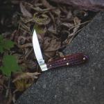 Case Sway Back Gent Red Bone Pocket Knife Review