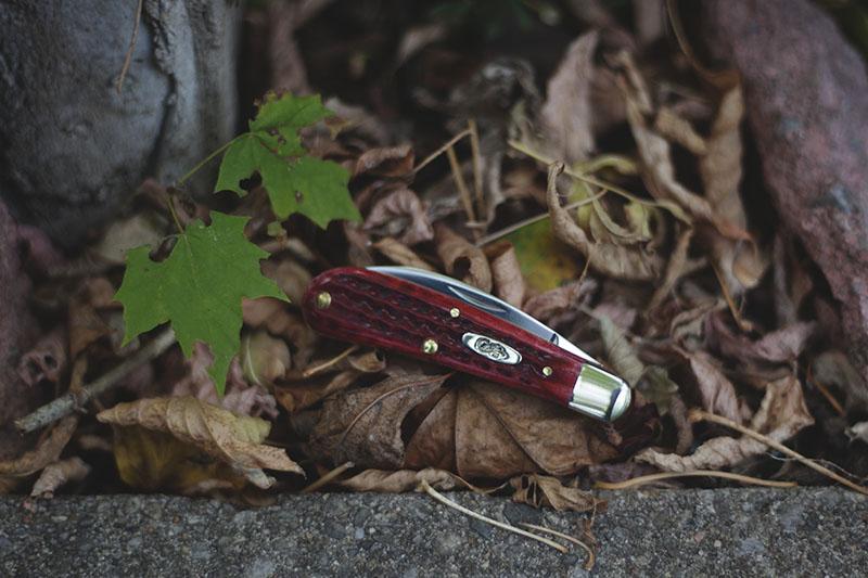 red bone case cutlery knife swayback gent folding slip joint