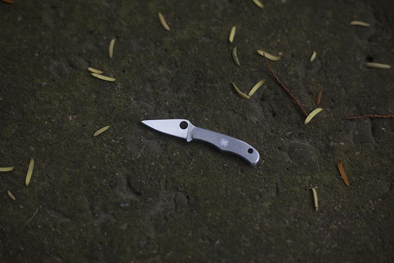 Spyderco Bug SS Tiny Folding EDC Keychain Knife Review