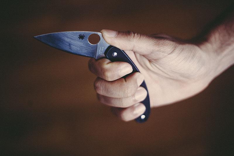 spyderco folding pocket knife edc world legal folder